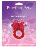 Buzzy Butterfly
